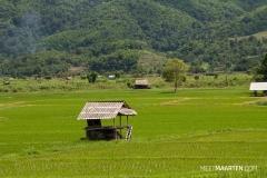Thailand-488